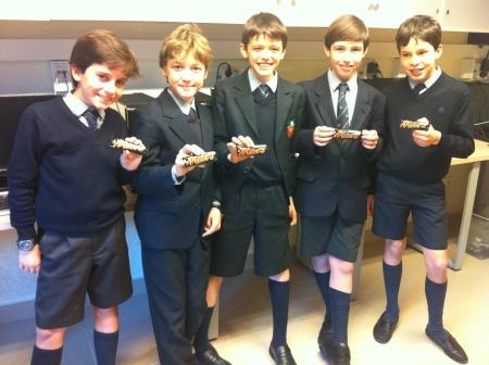 mars curiosity laboratory club juvenil codec